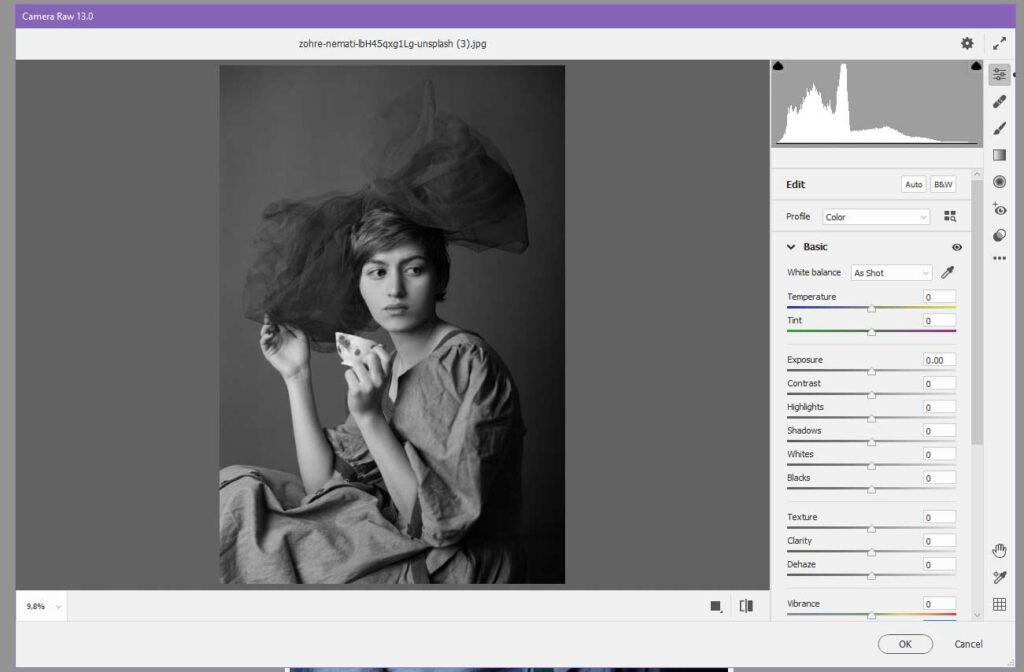 Photoshop ile Bir Resmi Siyah Beyaz Yapmak